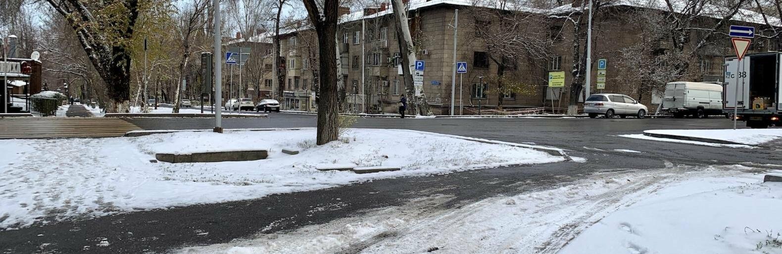 До 8 сантиметров снега выпало в Алматы