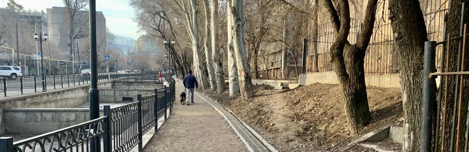 Три площадки для выгула собак оборудуют в Алмалинском районе Алматы